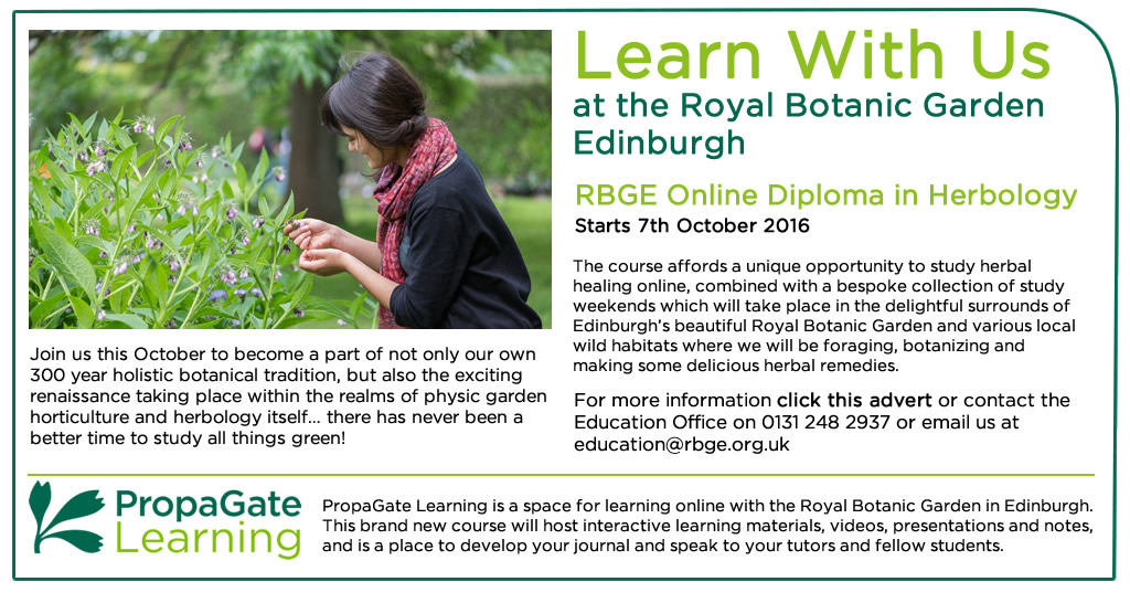 Herbology Online Diploma Advert